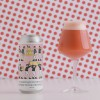 HUDSON VALLEY YET ANOTHER OUTSTANDING CONTRIBUTION TO THE HISTORICAL PROCESS SOUR IPA- NEWEST RELEASE'S