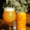 Tree House COMBO 4-Pack: Julius + SNOW + Super SAP+ Haze